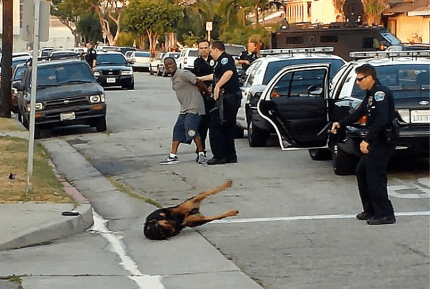 police-shoot-dog-puppycide-bill-buppert-copblock-hawthorne-police