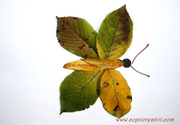 frunze ne jucam fluturele 1 (4)