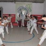 Capoeira Boraceia