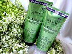 Loreal Reconstruct Shampoo and Conditioner