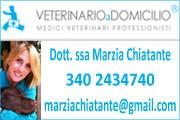 deambulatore laika pastore tedesco veterinario 4zampe