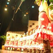 presentacion del disco se de un lugar - teatro municipal de montoro miguel romero esteo - coro rociero de la borriquita montoro (5)