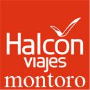 halcon-viajes-montoro