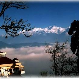 Darjeeling, il fulmine e il tè