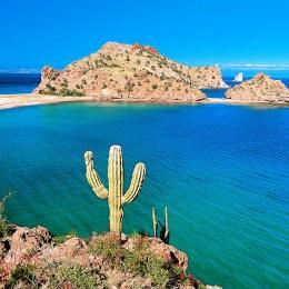Baja California, spettacolo