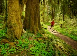 correr_na_natureza