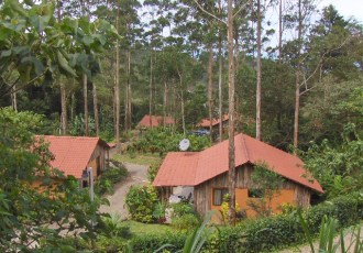 Cabinas tourism and expat business for sale in San Rmaon Costa Rica