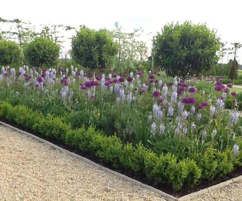 walled garden spring 4