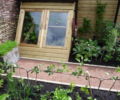 Cold frame,chamomile seat and vegetable garden