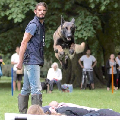 cotswold-show-2017-cotswolds-concierge (11)