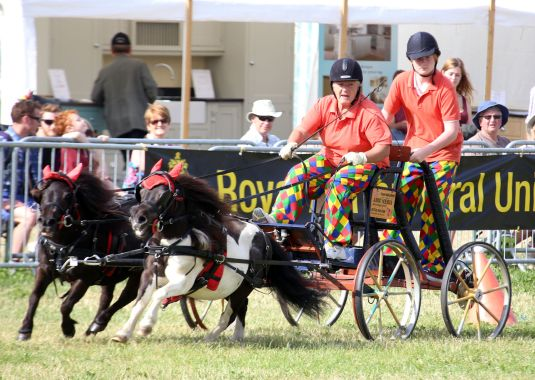 cotswold-show-2017-cotswolds-concierge (8)