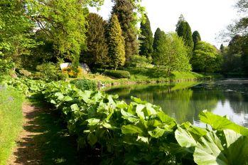 cowey-manor-cheltenham-cotswolds-concierge (24)