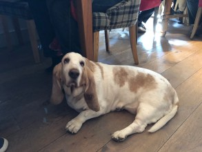 sunday-lunch-fuzzy-duck-armscote-cotswolds-concierge (10)