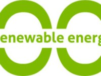 A 100% Renewable World Is Possible? A Poll Among Experts