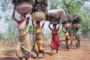 The CAMPA Bill Will Scuttle The Forest Rights Act
