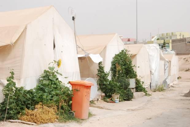 yezidi-camp1