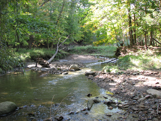 Clean Ohio Big Creek at Snake Hill Area Conservation