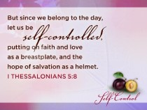 Self-Control image from ShareFaith