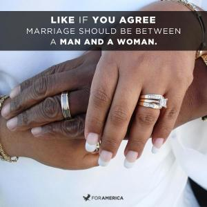 should marriage be defined as between Marriage & families unit 2 rapport is defined as _____ is the marriage between partners from the same race.
