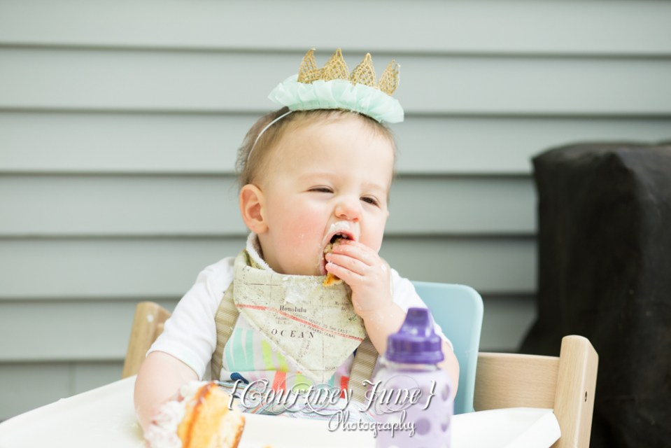 first-birthday-party-dr-suess-minneapolis-family-photographer-first-birthday-photographer-41