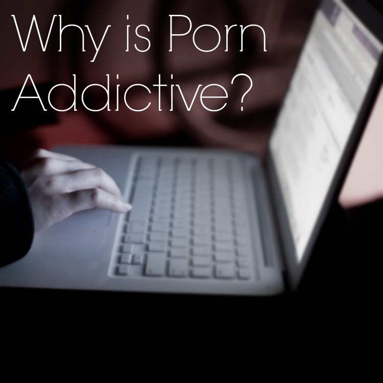Why is Porn Addictive