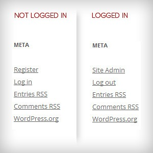 WordPress Meta Widget