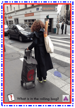 Groceries in rolling bag lady AZ
