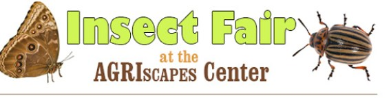 Insect Fair at the Bronco Student Center
