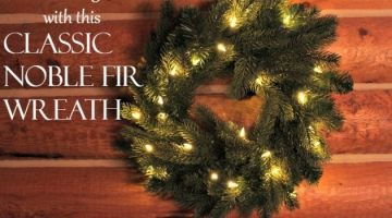 24 inch Classic Noble Fir Wreath Giveaway! Ends November 30th