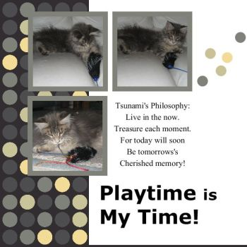 Tsuanmi's - Playtime Is My Time