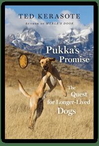 Pukkas Promise