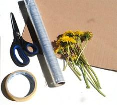 tablou din flori naturale presate - materiale necesare