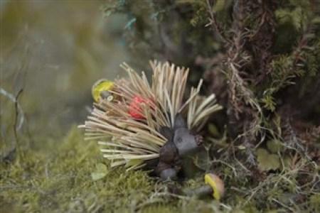arici din ace de pin - Ce minunatii poti crea din multimea de comori ale toamnei