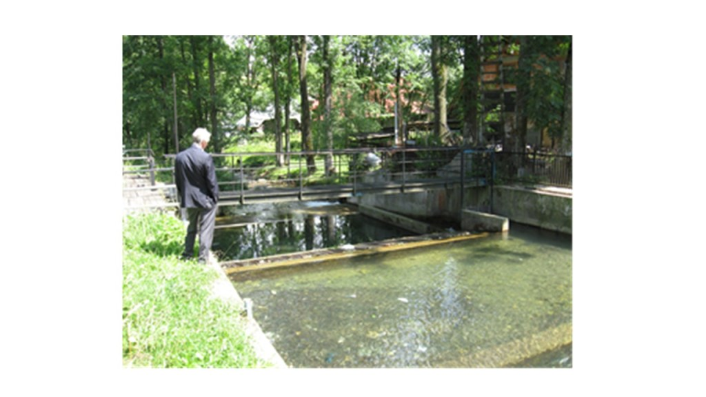The author admires the flow through an supply channel for a power plant in the Polish Mountains'