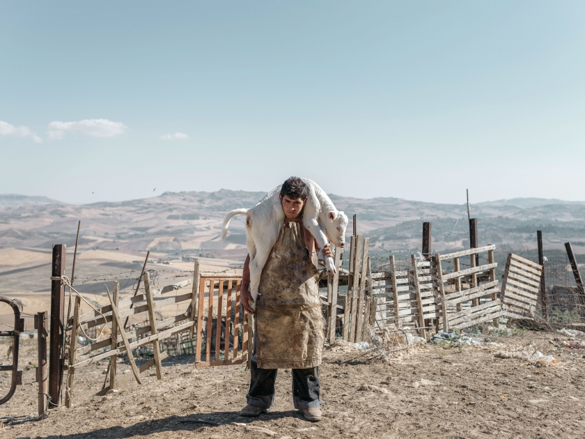 Copyright: © Roselena Ramistella, Italy, 1st Place, Professional, Natural World & Wildlife (2018 Professional competition), 2018 Sony World Photography Awards