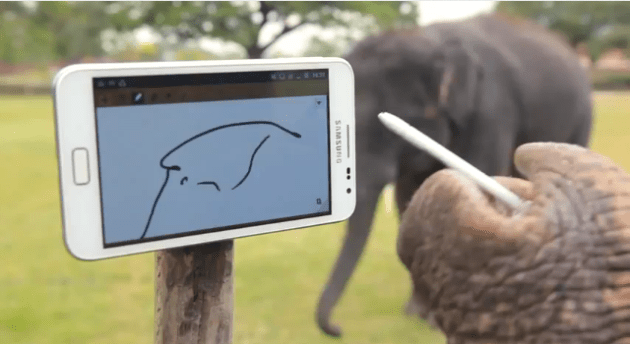Elephant Plays with a Galaxy Note [VIDEO] Guerrilla Marketing Photo