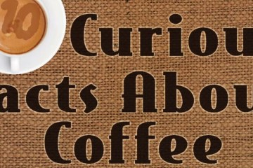10 Curious Facts About Coffee   YouTube_1398x700