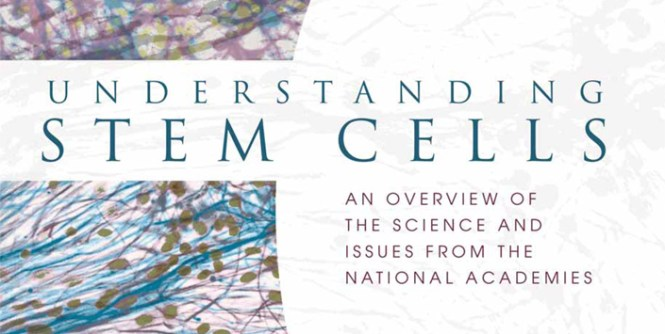 Stem Cells Booklet