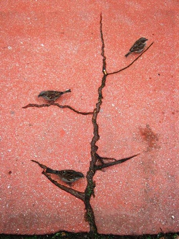 Three-little-Birds-Photography-by-Alexey-Menschikov