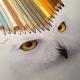 Karla-Mialynne-hyper-realistic-illustrations_15