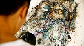 Beautiful Owl Illustrations with Paint Splashes