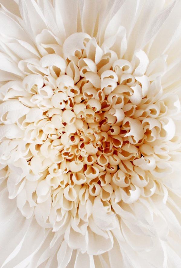 Paper Blossom 2