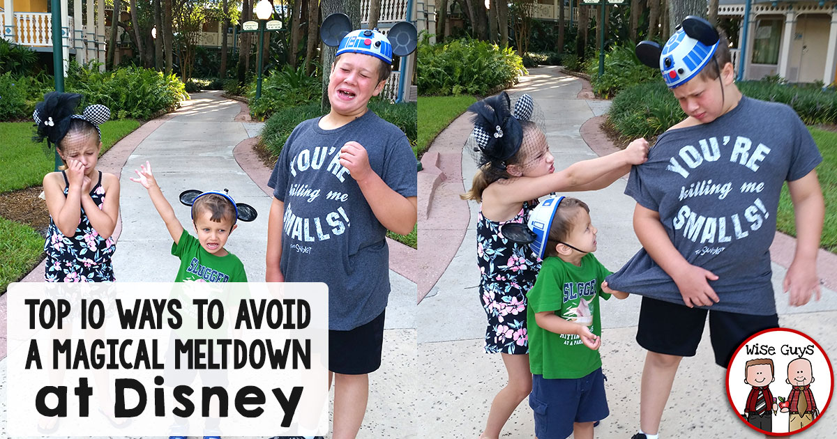 Save your sanity and create special memories with these top ten ways to avoid meltdowns with traveling to theme parks like Disneyland or Disneyworld.
