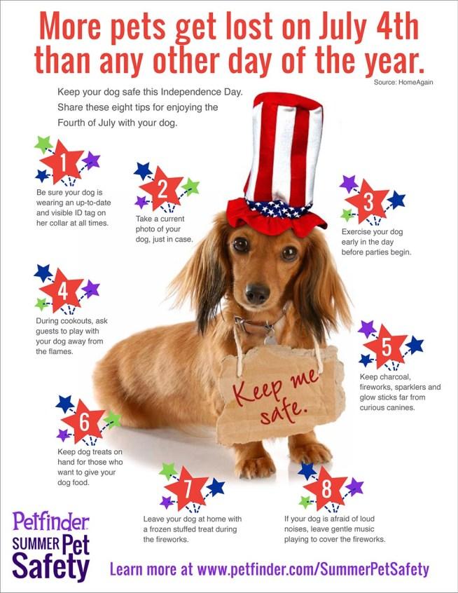 july-4-dog1024