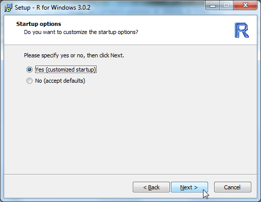 Setup R for Windows 3.0.2 startup options
