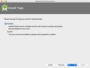 install type standard
