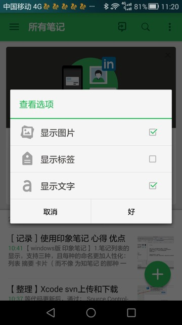 view options for evernote