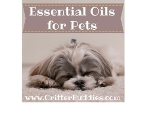 Essential Oils for Pets Graphic
