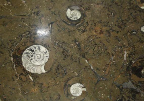 1cm Thin Slabs Crocodile Rocks