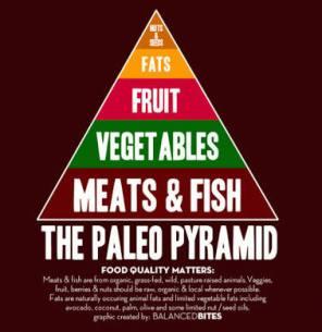 paleo-pyramid-pic